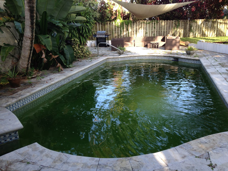 The dangers of a dirty pool