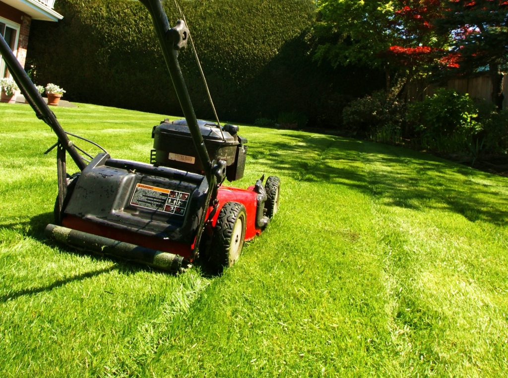 Keep Your Pool Grass-Free This Summer